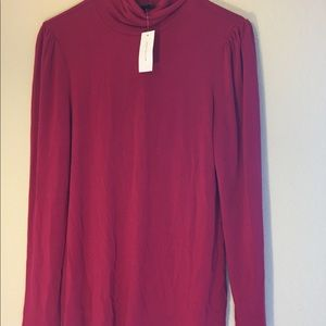 ⚡️⚡️⚡️NWT Ann Taylor Turtle Neck (lightweight)